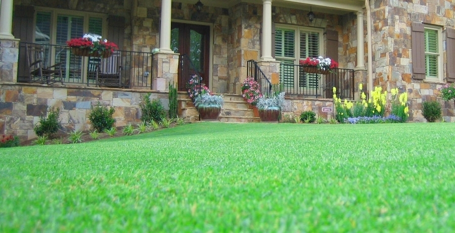 Have the Greenest Lawn on the Block