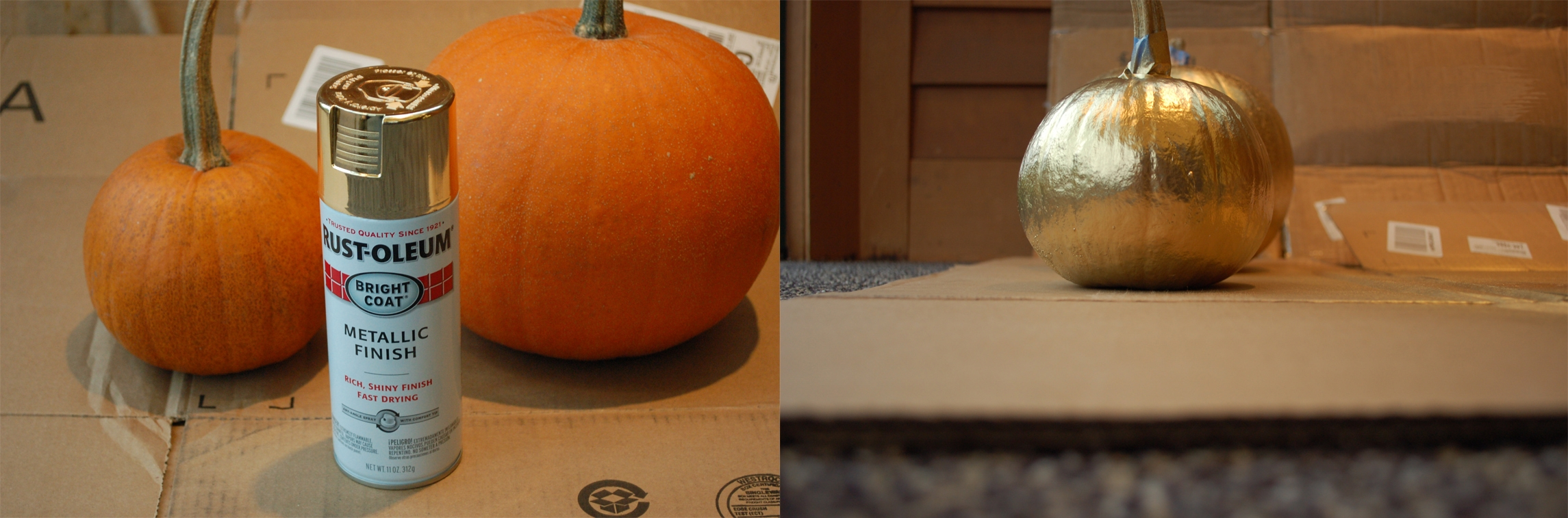 Spraying Pumpkins with Gold Paint
