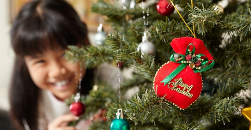 Caring for Your Freshly Cut Christmas Tree