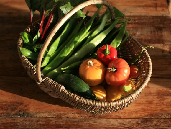 Vegetables in Harvest Basket