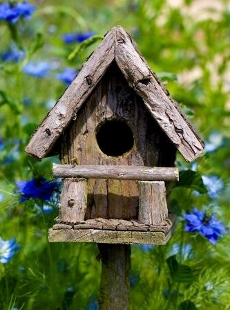 Wooden Birdhouse Among Blue Flowers