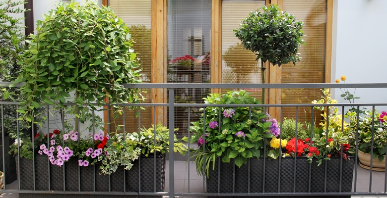 Exceptionnel Vertical Container Gardening