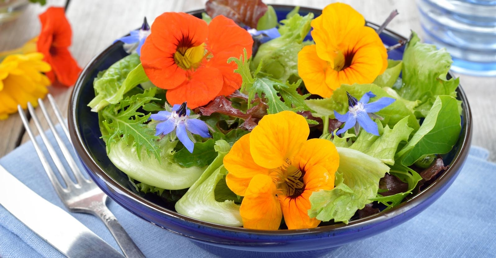 5 Delightful Edible Flowers