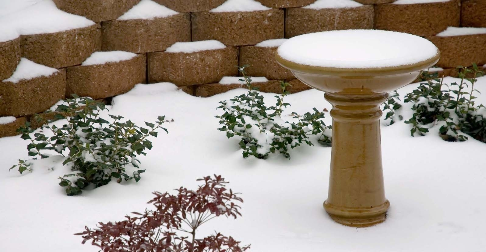 How to Winterize a Bird Bath