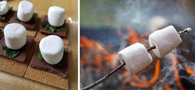 Hint of Mint S'mores Oven Recipe, Roasting Marshmallows on a Stick