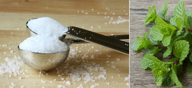 Salt, Sugar and Mint