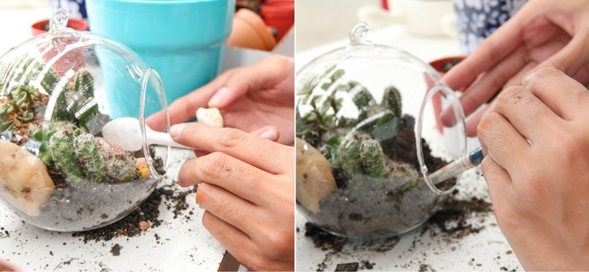 Using tools inside a small terrarium
