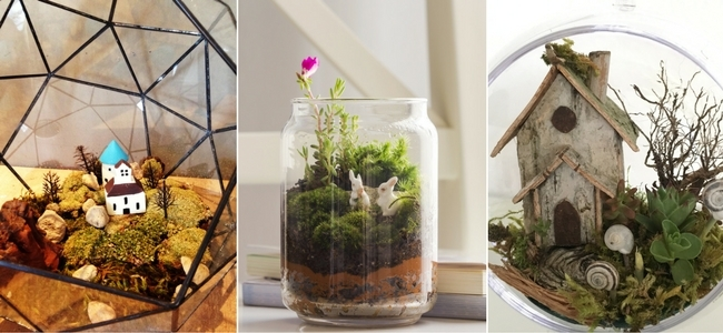 Decorations ideas for terrariums