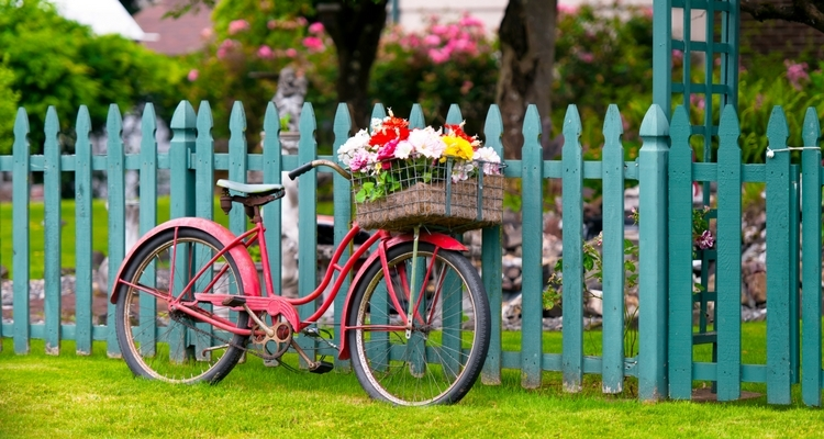 Bicycle with Basket used as Planter