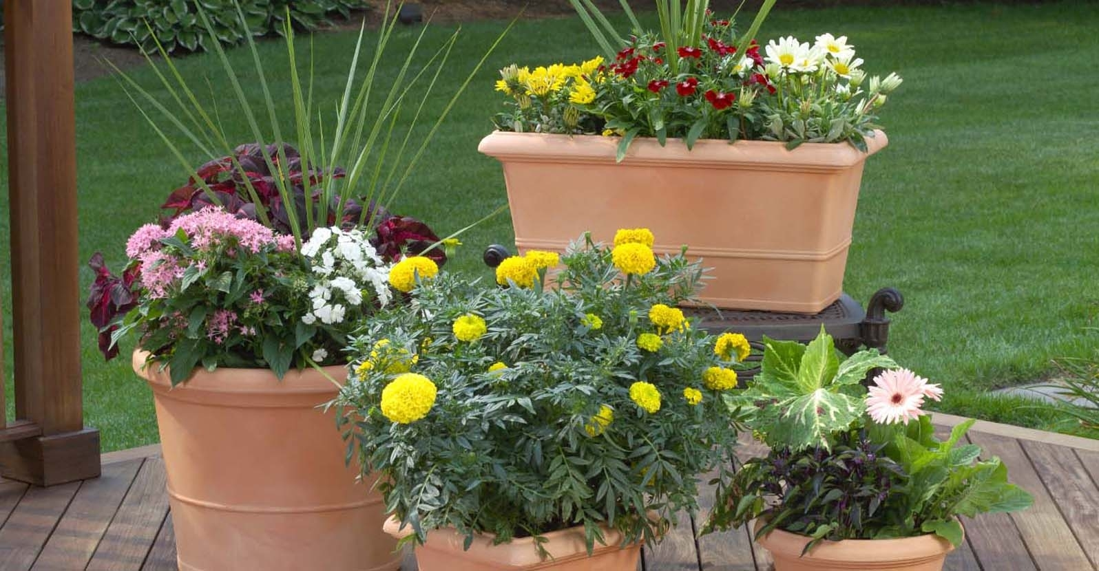TIP: Creating Attractive Combination Containers