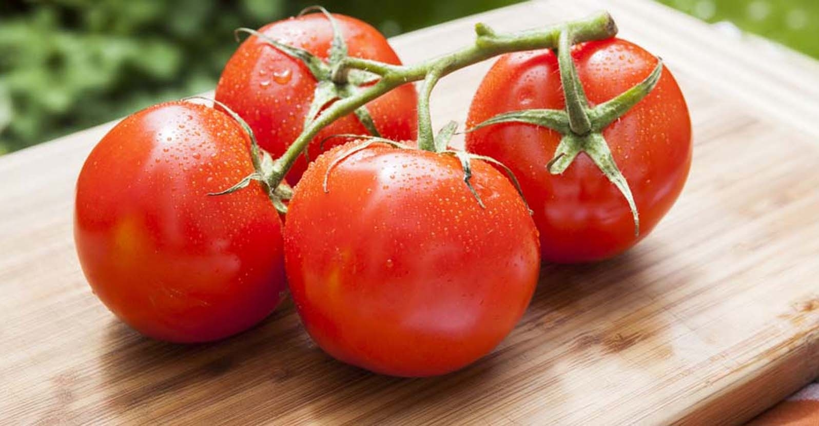 Use Your Summer Harvest:  Fresh Tomatoes 5 Ways