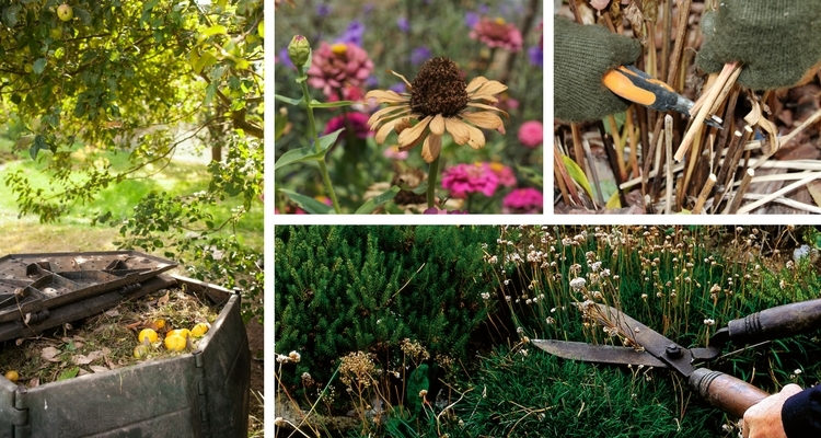 Cutting, pruning and composting are all part of autumn clean up.