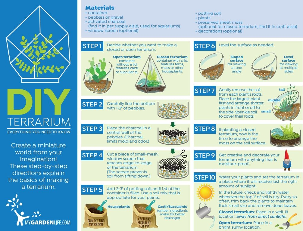 Step-by-Step Terrarium Directions