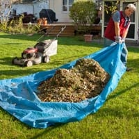 Man pulling tarp with leaves