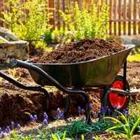 Wheelbarrow in Garden with soil