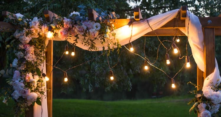 Pergola with Roses, Fabric and a String of Lights, Night Garden