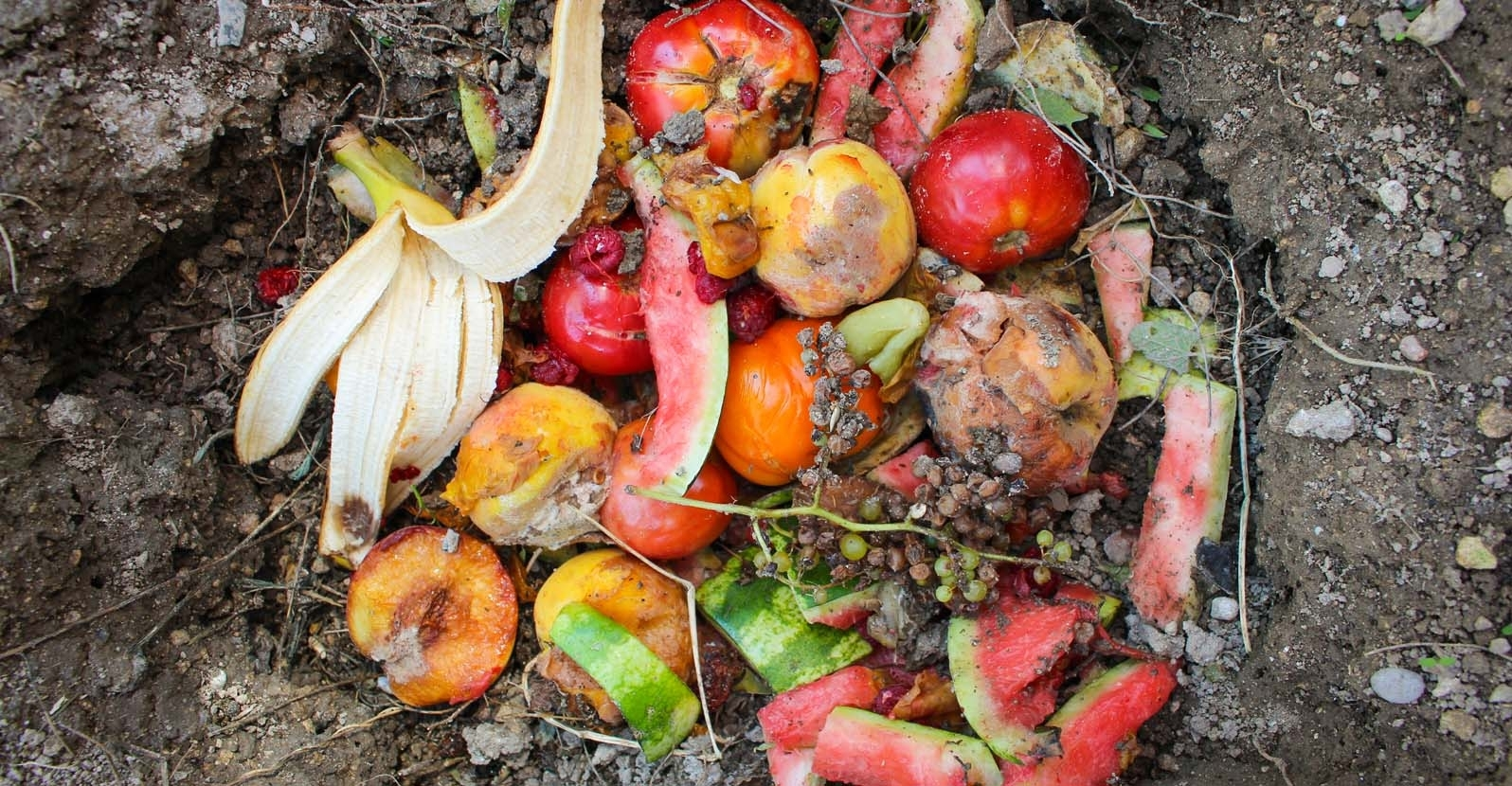 Guide To Direct Composting My Garden Life