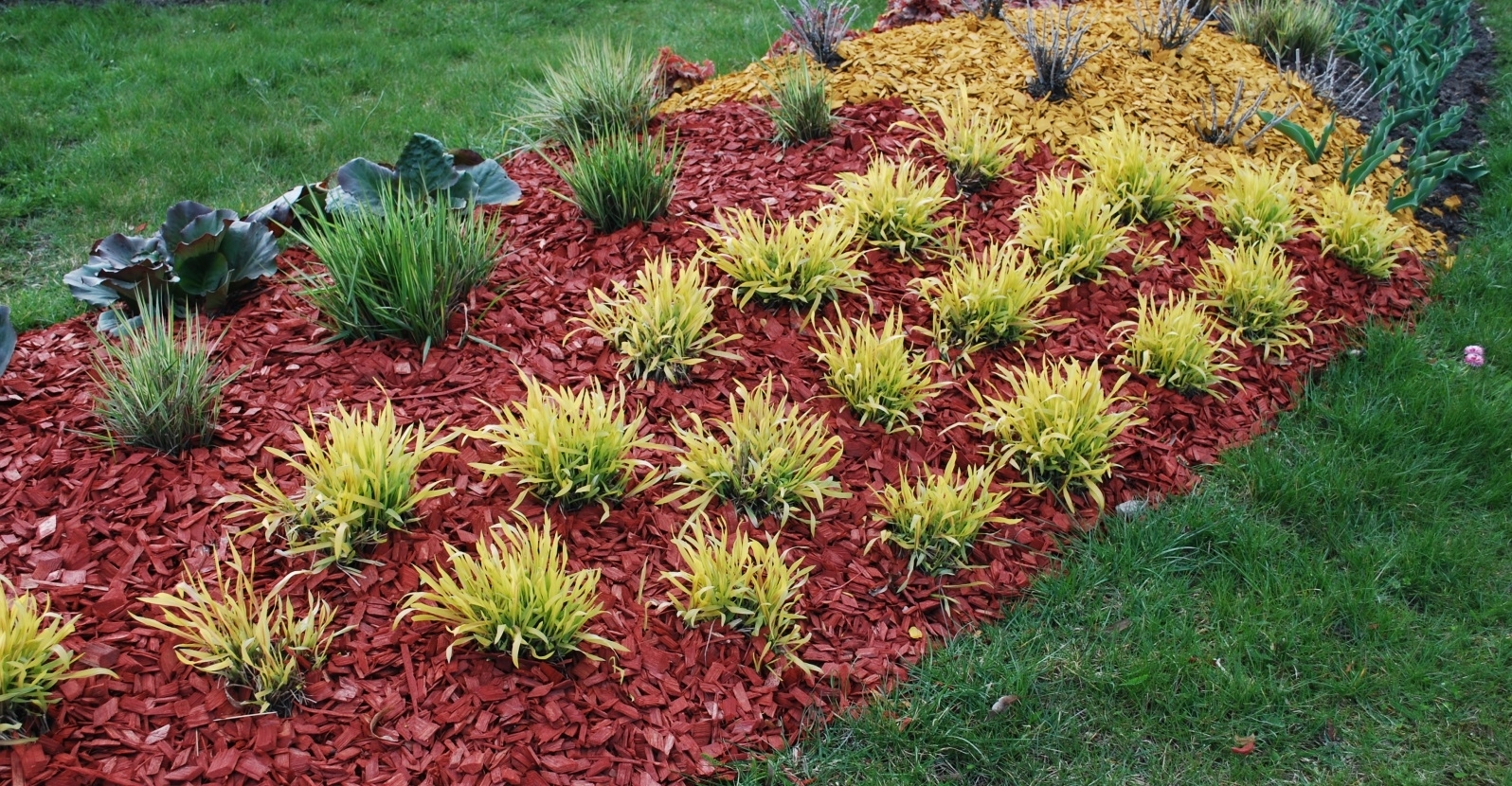 What S The Best Mulch For My Landscape My Garden Life