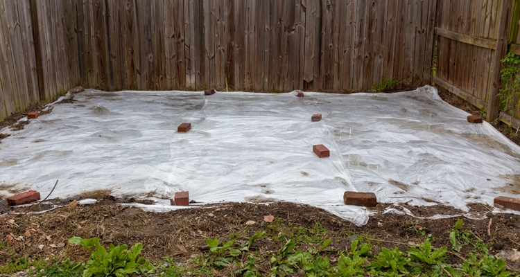 Garden bed covered with plastic to prevent or kill weeds.