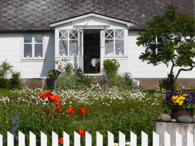 5 Alternatives to a traditional lawn, photo of house with meadow instead of lawn