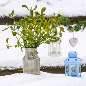 mistletoe displayed with blue lantern outdoors in the snow