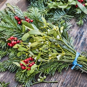 holiday swag made of mistletoe and evergreen branches