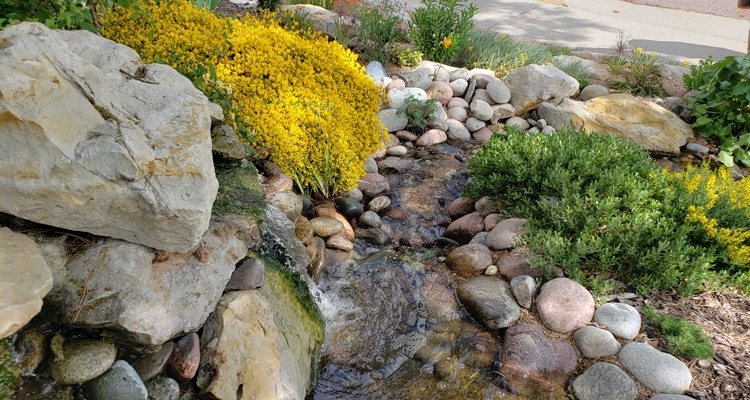 5 Uses For Rocks In Your Landscape My, Rocks In A Garden