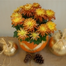 Halloween Pumpkin and Mum Centerpiece