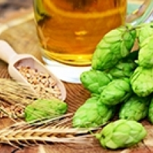 Grow Your Own Hops