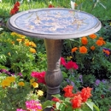 Top 5 Tips: Maintaining a Bird Bath