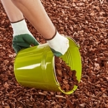 Time-Saving Tip: Mulch