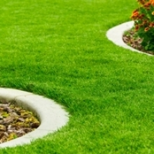 How-to: Green-up Your Lawn this Spring