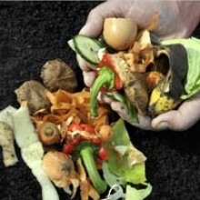Guide to Direct Composting