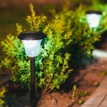 Guide to Lighting Your Garden