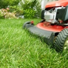 3 Simple Steps for a More Beautiful Lawn