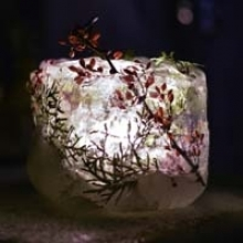 DIY: Ice Luminaries Are Simple to Make