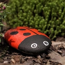 DIY Painted Rocks for Your Garden