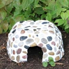 How to Make a Toad House