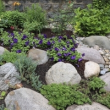 5 Uses for Rocks in Your Landscape